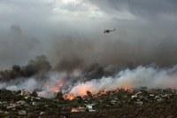 Mesaj de compasiune şi solidaritate  cu victimele incendiilor din Grecia